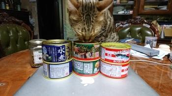 サンマカンズメ.JPG